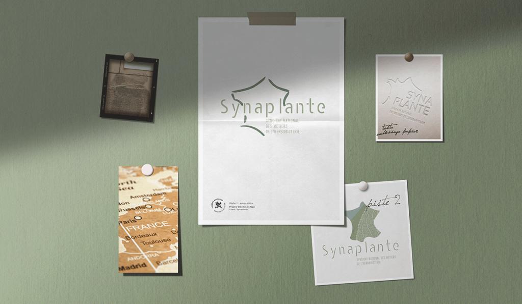 visuel des différentes propositions du logo pour le Synaplante, réalisées par Laurent Agier, agence de communication à Toulon